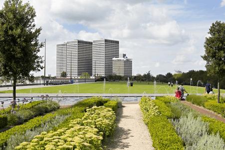 Urban Roofs in Rotterdam